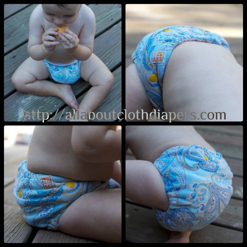 Orange Diaper Company Review: Absorbency and Buying