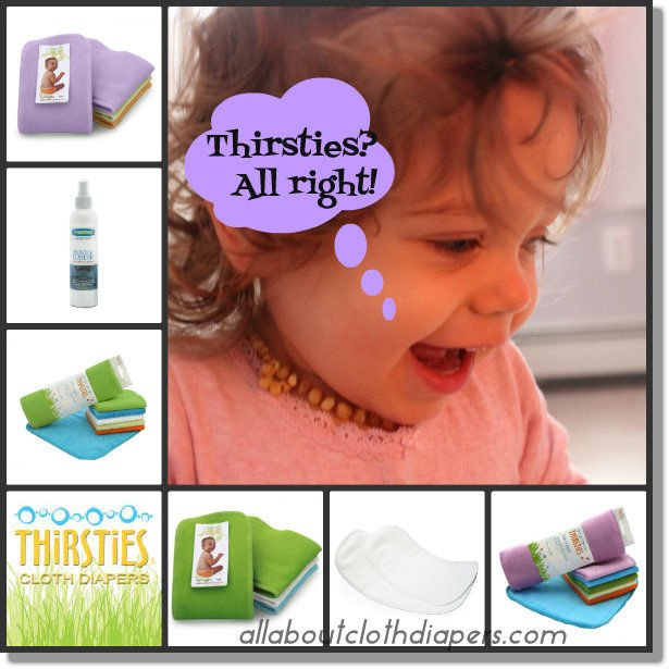 Four Awesome Thirsties Cloth Diaper Accessories