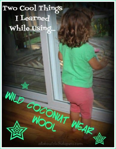 Two Cool Things I Learned While Using Wild Coconut Wear Wool!