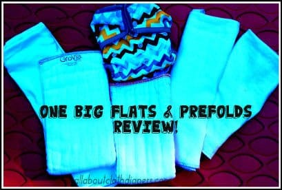 Big Review of 5 Prefolds and Flats. There Isn't a Bad One in the Bunch!