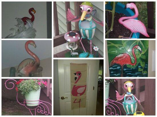 Flamingo9