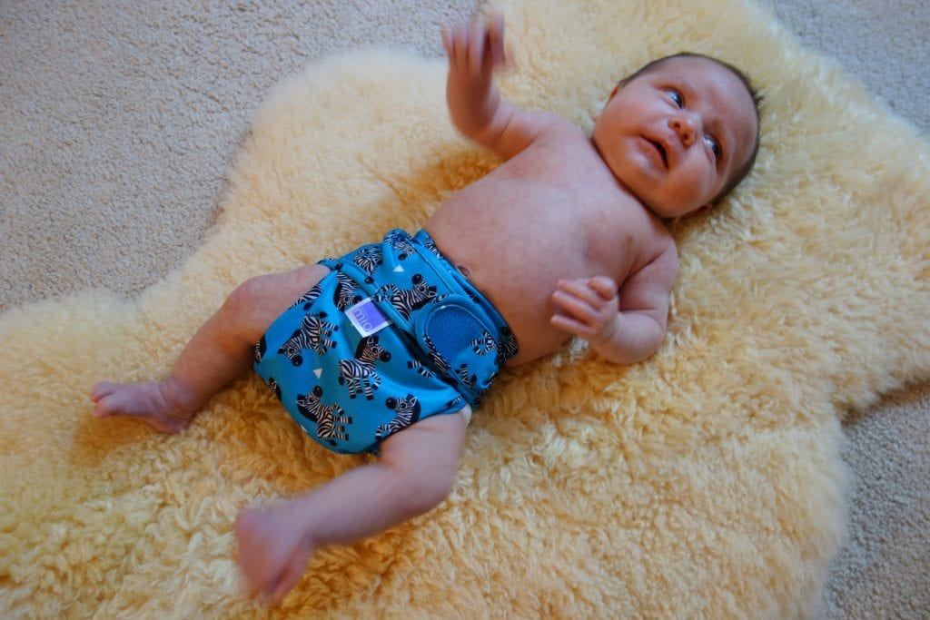 One month old, 9 pound Norah in her Bambino Mio size 1 cover.